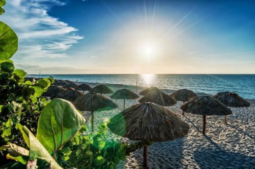 Be Live Turquesa CUBA