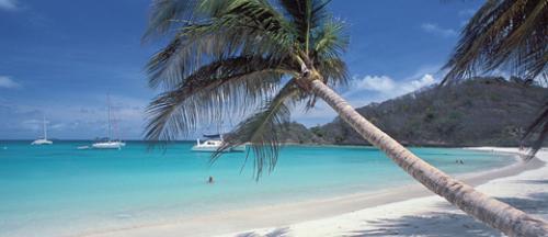Croisière Grenadine Dream Yacht MARTINIQUE